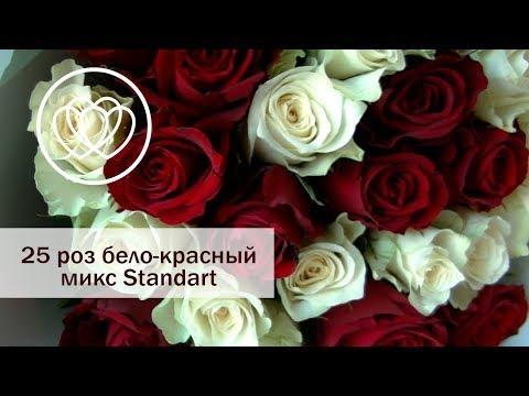 Букет 25 роз бело-красный микс Standart