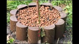 видео Бесплатный онлайн-конструктор садового участка