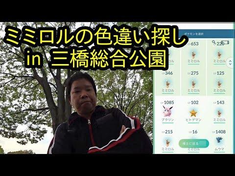 【ポケモンGO】三橋公園でミミロルの色違い探し