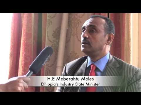 Interview  With Ethiopia's Industry State Minister .