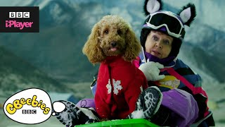 Waffle the Wonder Dog Song | Friends and Family | CBeebies
