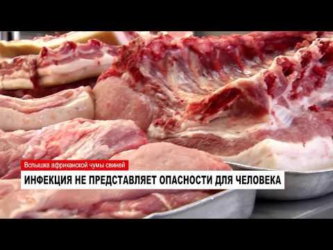 14.11.2017 Новости Нашего Города г.Ноябрьск