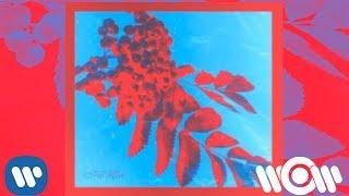 Денис RiDer - Снегири   Official Audio