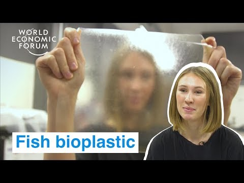 a-uk-student-created-a-bioplastic-from-fish-that-breaks-down-in-6-weeks-|-ways-to-change-the-world