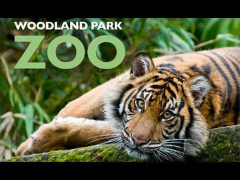 Attractions— Visit Seattle Zoo (Woodland Park)