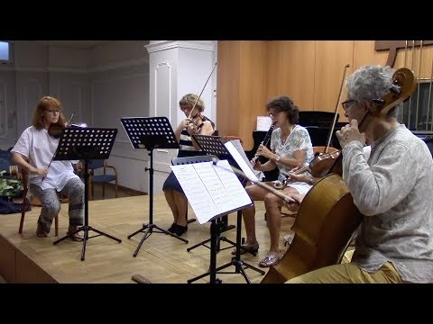 Chamber music Workshop in Budapest