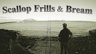 Scallop Frills & Bream - Shore Fishing