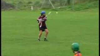 2007 County Senior Camogie Final