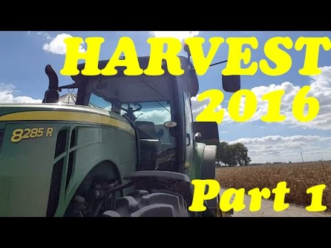 HARVEST 2016 AT THE FOX SHOP