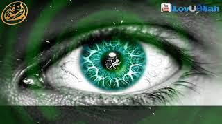 Как увидеть пророкаﷺ во сне!