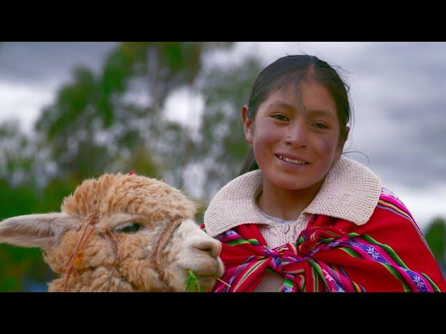 Spotlight Peru: ¡Bienvenida a Spotlight Perú!  🇵🇪 // Welcome Spotlight Peru! 🇵🇪
