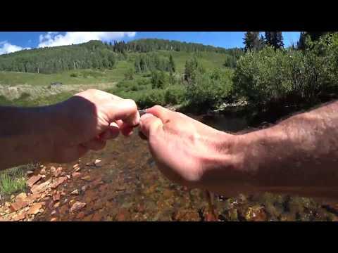 Fishing Colorado. Coal Creek near Crested Butte