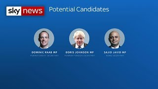 Who could replace Theresa May as leader of the Conservative Party?