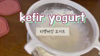 티벳버섯 케피어 만들기 요거트 만들기 밀크 케피어 HO…