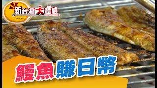 攻佔日本人的味蕾 大賺鰻魚財! 《新台灣大體驗》第35集 廖慶學