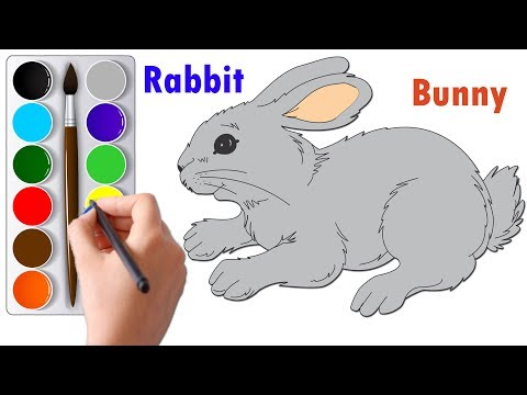 Draw And Color A Rabbit Or Bunny Step By Step | Drawing And Coloring Tutorials