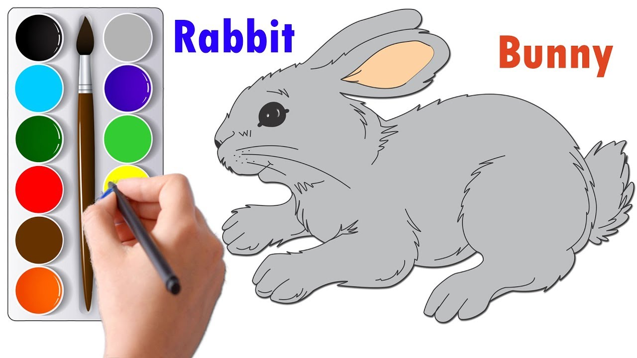 Draw And Color A Rabbit Or Bunny Step By Step Drawing And Coloring Tutorials Youtube