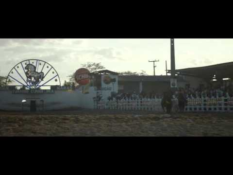 Boi Neon Trailer Oficial    YouTube