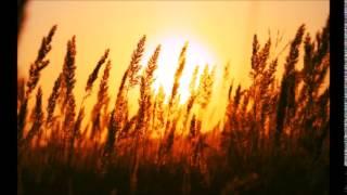 Andain - Promises (Ignas Ecstasy Heaven mix)