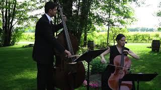 Cérémonie de mariage (violoncelle & contrebasse)