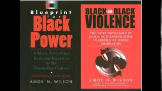 Amos N. Wilson | Critical Analysis and the Application of Power