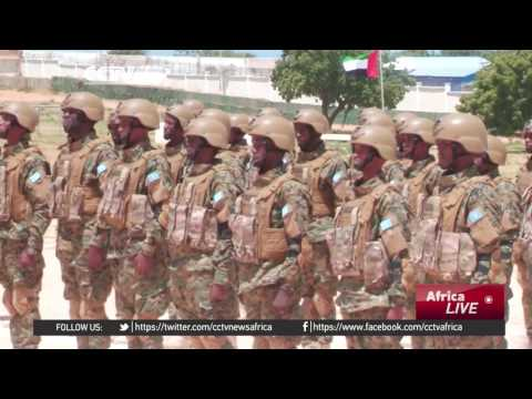 Egypt offers assistance to Somali military