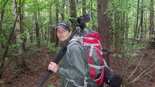 видео Поход в лес