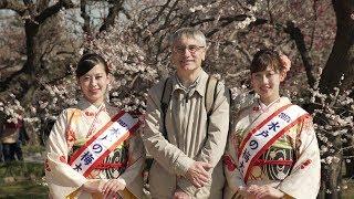 「水戸の梅まつり」 ※毎年、2月下旬から3月上旬に、茨城県・水戸市にあ...