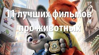 11 лучших фильмов про животных