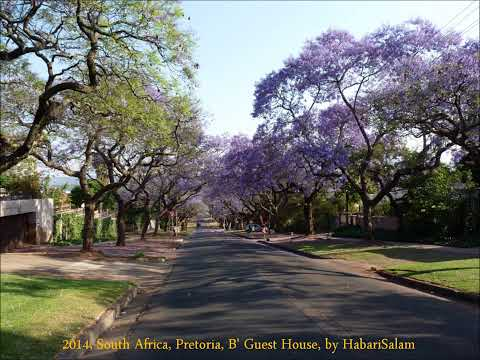 2014 South Africa   Pretoria, B' Guest House, by HabariSalam, Jacarandas City