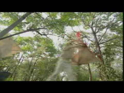 Download Hero Fong Sai Yuk - Episode 1 (1/4)