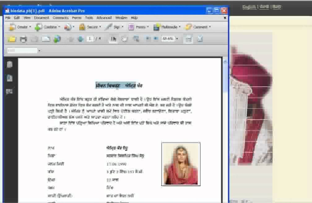 digital matrimonial bio data youtube - Matrimonial Resume Format