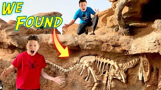 We found dinosaur foṡsils in our backyard!