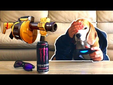 Dog Plays Fortnite Fails Bigtime! Funny Dog Louie The Beagle