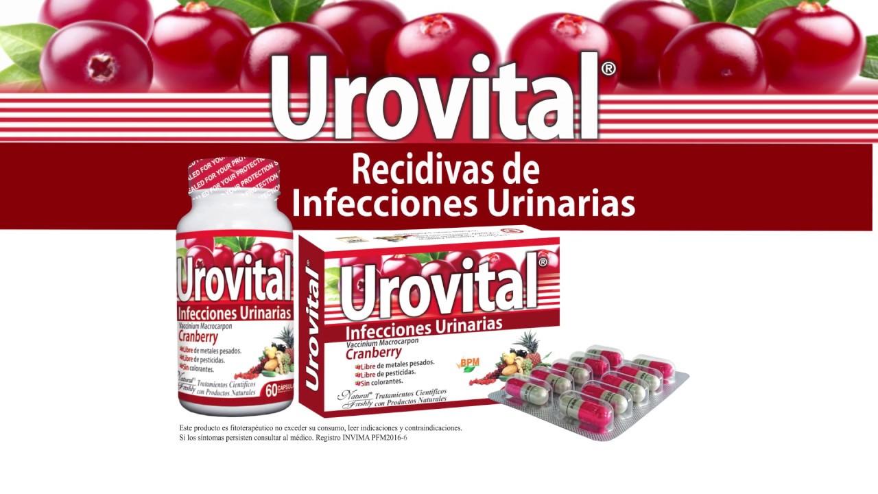 medicamentos naturales para curar infecciones urinarias