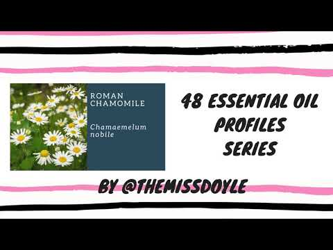 roman-chamomile-#10-essential-oil