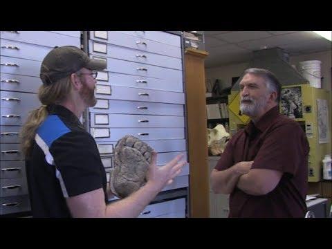 Proof Bigfoot live in California. New Sasquatch video evidence