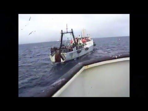 Все художественные фильмы о рыбалке+ видео