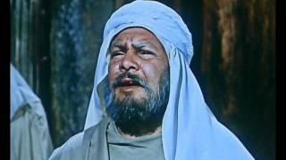 انك لا تهدى الاحبة @ سعاد محمد