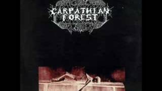 Watch Carpathian Forest A Forest video