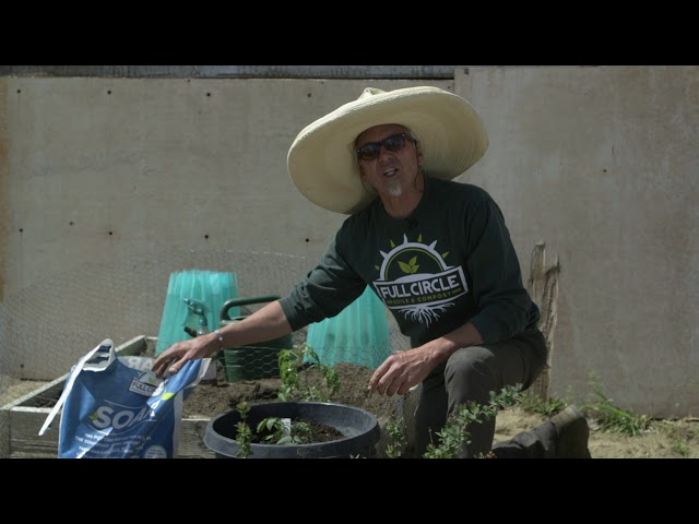 How To Use SOAR Potting Mix Full Circle Soils & Compost