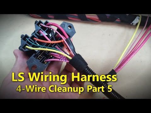 LS Wiring Harness Part 5 | Project Rowdy Ep017 - YouTube
