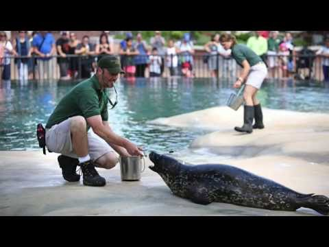 Celebrating National Zoo Keeper Week at Lincoln Park Zoo