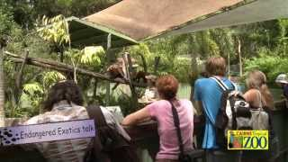 Cairns Tropical Zoo