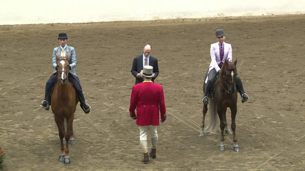 Big E Saddleseat Horse Show '15 - Show Pleasure Three-Gaited - Chloe Deeb - Annie's Perfec