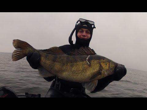 Русская рыбалка скачать бесплатно на русском языке для