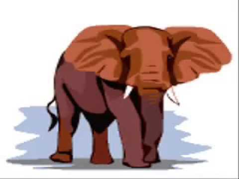 Học tiếng anh cho trẻ em qua hình ảnh động vật..rất hiệu quả!