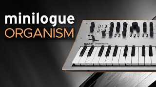 Korg Minilogue Patches for Ambient, Techno, IDM and Electronica - Sound Demo (No Talking)