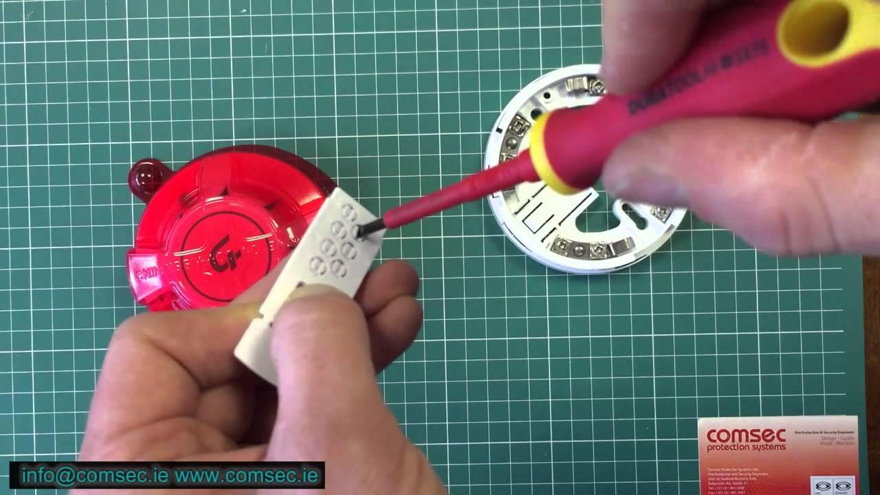 Apollo Xp95 Addressable Smoke Detector Wiring Diagram 2000 Gmc Jimmy Radio Base Youtube