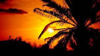 Sunner Soul - Neptune Jazz